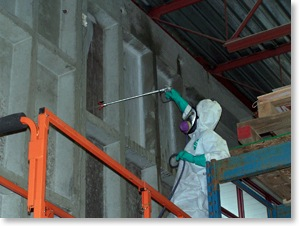 industrial mould inspections and mould removal