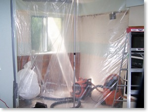 containment barriers for mould removal