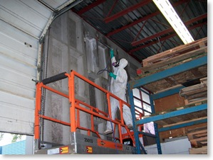 industrial remediation mould removal